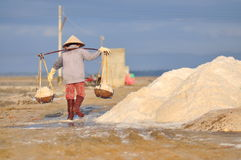 Vietnamese women are burdening hard to collect salt from the extract fields to the storage fields. NINH HOA, VIETNAM - MARCH 2, 2012: Vietnamese women are Royalty Free Stock Photos