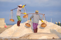 Vietnamese women are burdening hard to collect salt from the extract fields to the storage fields Royalty Free Stock Images