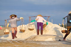 Vietnamese women are burdening hard to collect salt from the extract fields to the storage fields. NINH HOA, VIETNAM - MARCH 2, 2012: Vietnamese women are Royalty Free Stock Photo