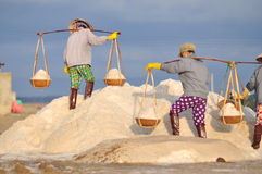 Vietnamese women are burdening hard to collect salt from the extract fields to the storage fields Royalty Free Stock Image