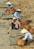 Vietnamese women sort fish for the famous fish sauce Nouc-mam Stock Photos