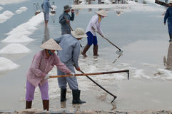 Vietnamese workers on salt-lake. Workers on salt-mines in Vietnam, wearing traditional conical hats Stock Photos