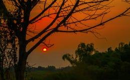 Vietnamese zonsondergang in de herfst stock foto