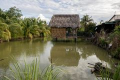 Vietnamesisch-ähnliches Baum-Haus auf schönem grünem Teich mit Kokosnuss-Bäumen und tropischen Anlagen - Sunny Day mit Wolken stockbilder