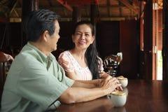 Vietnamesische ältere Paare Lizenzfreies Stockfoto