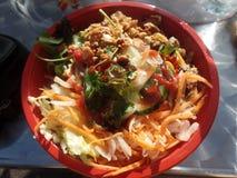 Vietnamesische chargrilled Hühnerschüssel mit Reis lizenzfreies stockfoto