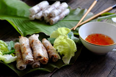 Vietnamesische Frühlingsrolle Stockfotos
