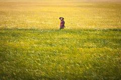 Vietnamesische Frau an den Reisfeldern auf 26 vom Dezember 2013, Vietnam Lizenzfreie Stockbilder