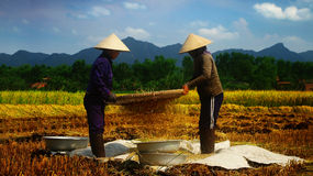 Vietnamesische Landwirte Stockfoto