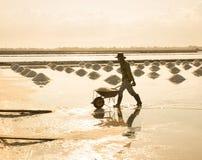 Vietnamesische Leute, die an dem Salzfeld arbeiten Stockfotos
