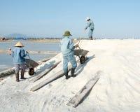 Vietnamesische Leute, die an dem Salzfeld arbeiten Stockbild