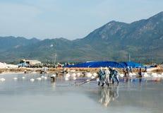 Vietnamesische Leute, die an dem Salzfeld arbeiten Lizenzfreies Stockbild