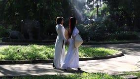 Vietnamesische Mädchen, die konischen Hut und AO Dai (vietnamesisches traditionelles Kostüm oder langes, tragen Kleid) stock video footage