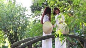 Vietnamesische Mädchen, die konischen Hut und AO Dai (vietnamesisches traditionelles Kostüm oder langes, tragen Kleid) stock footage