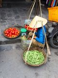 Vietnamesischer Gemüseverkäufer mit Körben Lizenzfreie Stockbilder