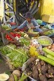 Vietnamesischer Obst- und GemüseVerkäufer Stockfotos