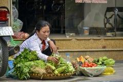 Vietnamesischer Straßenhändler in Hanoi Stockbild