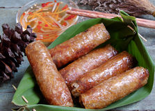 Vietnamesisches Lebensmittel, Frühlingsrolle, Brötchen, cha gio lizenzfreies stockbild