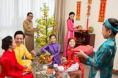Vietnamesisches neues Jahr stockfotografie
