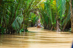 Vietnamesisk båtuthyrare i den Mekong deltan arkivfoton