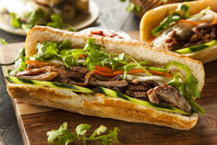 Vietnamesisk grisköttBanh Mi smörgås Royaltyfri Fotografi