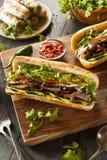 Vietnamesisk grisköttBanh Mi smörgås arkivbilder