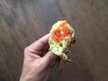 Vietnamesisk krabba för BBQ för gyttjakrabbaScylla serrata eller grillad krabba Fotografering för Bildbyråer