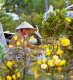 Vietnamesisk kvinna på blommamarknaden på Tet Royaltyfri Fotografi