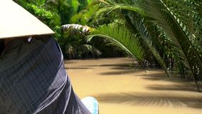Vietnamesisk kvinna som b?r en bladhatt och paddlar ett traditionell fartyg eller kanot i den Mekong deltan, Vietnam arkivfilmer