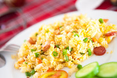 Vietnamesisk skinka stekte ris Royaltyfria Foton