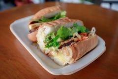 Vietnamesisk smörgåsbanh mi Royaltyfri Bild