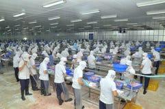 Vietnamesiska arbetare filea pangasiusfisken i en havs- bearbetningsanläggning i den mekong deltan Arkivfoto