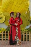 Vietnamesiska flickor i traditionella dräkter arkivbild