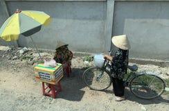 Vietnamesiska kvinnor royaltyfri bild
