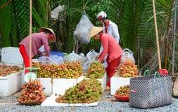 Vietnamesiska kvinnor som säljer många tropiska frukter Fotografering för Bildbyråer