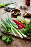 Vietnamesiskt färgrikt bräde för matingredienser Royaltyfri Bild