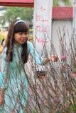 Vietnamita ao DAI Fotografia Stock Libera da Diritti
