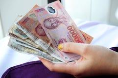 Vietnamita Dong Immagini Stock Libere da Diritti