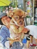 Vietnamita e cachorrinho animais do curso imagens de stock royalty free