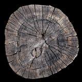 Vieux anneaux d'arbre Photographie stock libre de droits