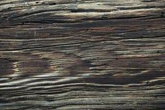 Vieux anneaux en bois Photos libres de droits