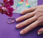 vieux anneaux et carte postale de mariage de 25ème de mariage †d'anniversaire «avec deux perroquets Image stock