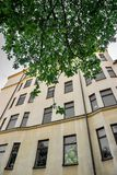 Vieux bâtiment jaune avec la feuille verte Images stock
