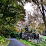 Vieux bâtiment sur la route de Taranaki en automne Images libres de droits