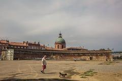 Vieux bâtiments à Toulouse Images libres de droits