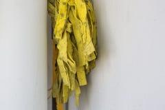 Vieux balai jaune avec le maigre de champignon contre photo libre de droits