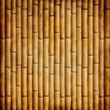 Vieux bambou Photo stock