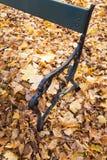 Vieux banc de parc avec les feuilles d'automne jaunes tombées Photographie stock