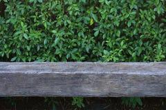Vieux banc en bois avec la feuille verte image libre de droits