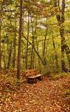 Vieux banc en parc d'automne Photographie stock libre de droits